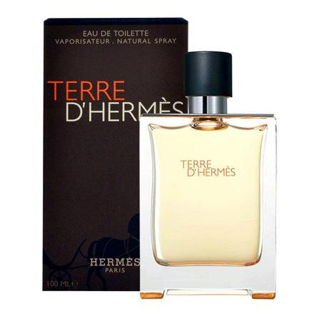 Hermes Terre d´Hermès toaletní voda 50 ml Tester pro muže
