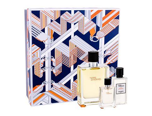 Hermes Terre D´Hermes EDT dárková sada pro muže - EDT 100 ml + EDT 12,5 ml + voda po holení 40 ml