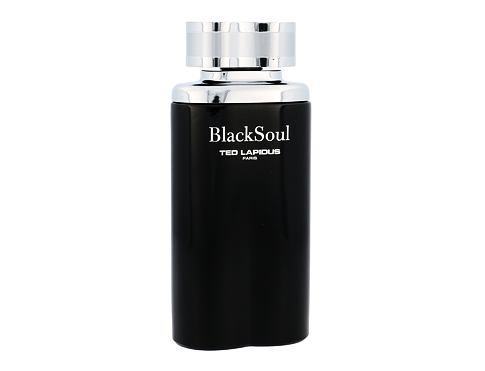 Ted Lapidus Black Soul 100 ml EDT pro muže