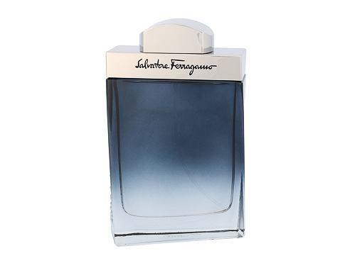 Salvatore Ferragamo Subtil Pour Homme 100 ml EDT pro muže